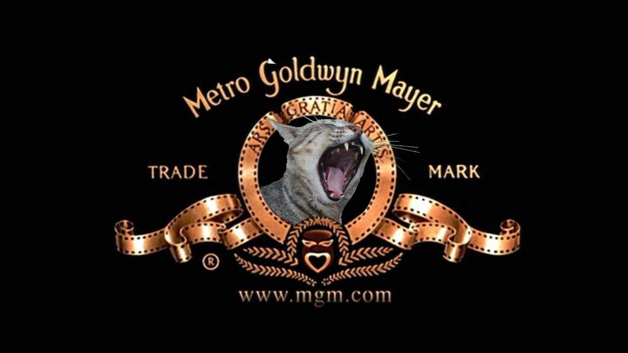 La Metro Goldwyn Mayer presenta: Gigio r Moretta